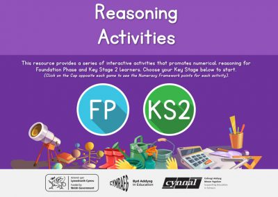 Reasoning Activities